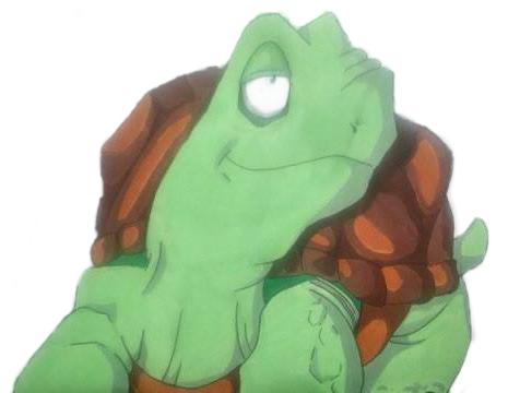 romain-tortue-28-avril-2015-web