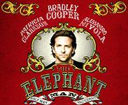 the-Elephant-Man-x150
